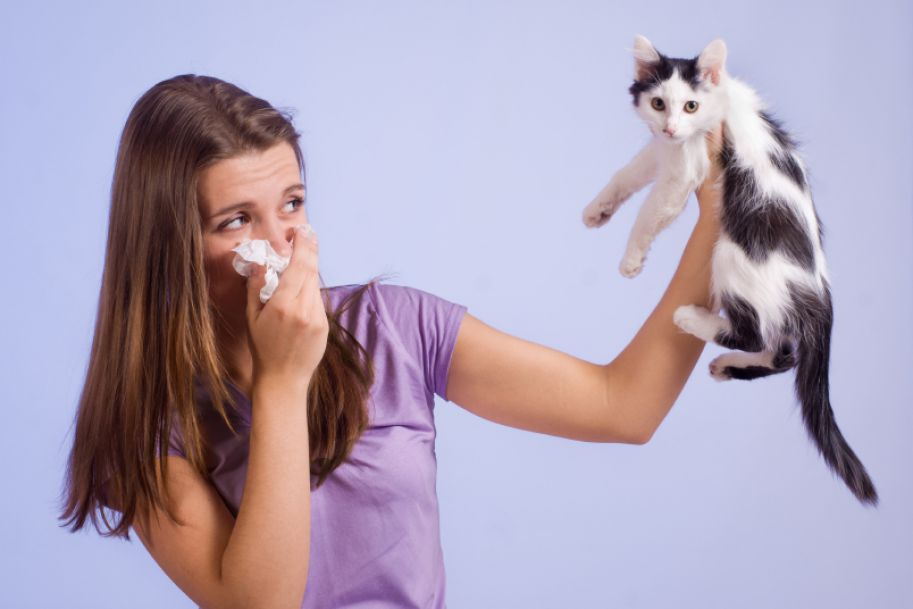 Odczulanie jako metoda leczenia alergii w praktyce lekarza podstawowej opieki zdrowotnej