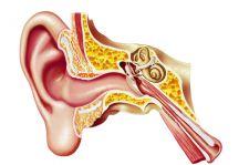 Nowa nadzieja dla niesłyszących?