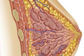 Doustna terapia winorelbiną i kapecytabiną u chorych z rozsianą postacią raka piersi wcześniej leczonych antracyklinami – wyniki badania II fazy